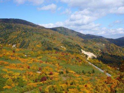 十和田八幡平国立公園 八幡平地域 八幡平アスピーテライン(御在所)の紅葉