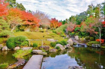 妙心寺退蔵院(余香苑)の紅葉