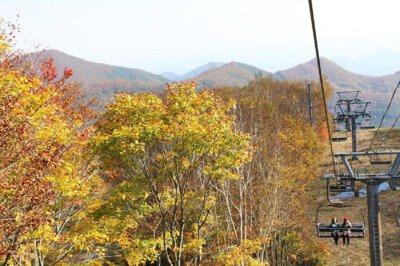 スプリングバレー泉高原の紅葉