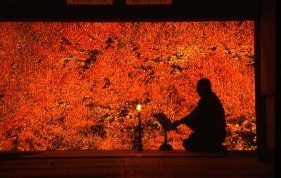 但馬安國禅寺のドウダンツツジの紅葉
