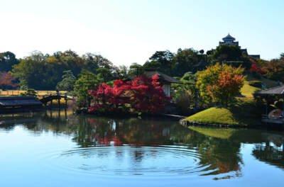 岡山後楽園の紅葉