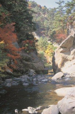 県立自然公園 差切峡の紅葉
