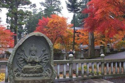雲辺寺の紅葉