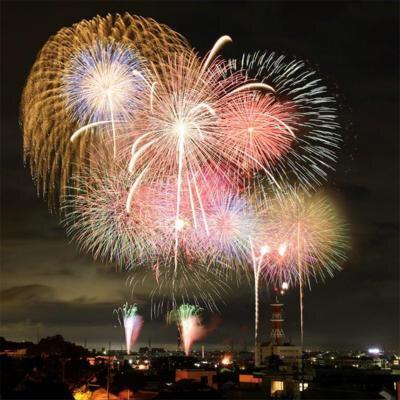 【2020年開催なし】田原祭り・五町合同花火大会