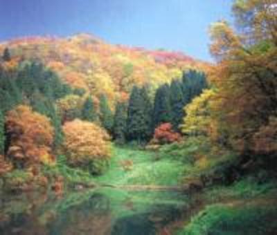 嘉例沢森林公園