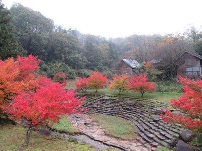 かみくの桃源郷の紅葉
