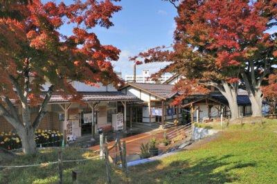 湯田中渋温泉郷の紅葉