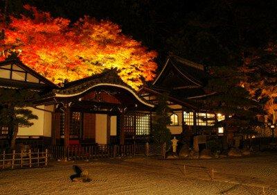 下呂温泉の紅葉