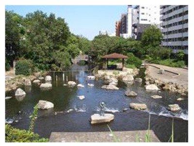 仙台堀川公園・南砂緑道公園