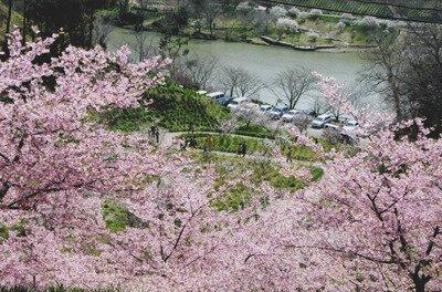 佐久間ダム湖公園