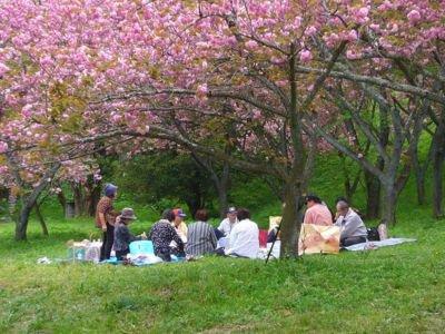 えぼし公園