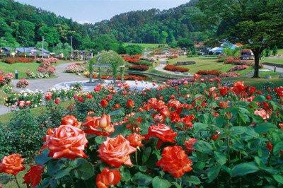 東沢公園(東沢バラ公園)