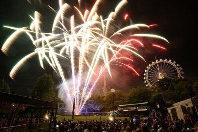 到津の森公園「星降る花火ファンタジー」