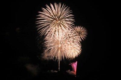 【2020年中止】第65回 とちお祭大花火大会