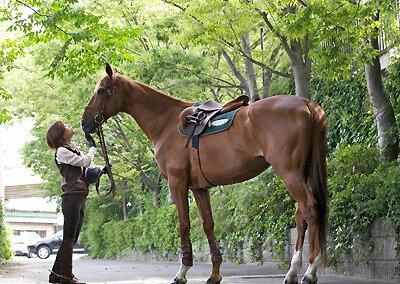 乗馬クラブ クレイン東京