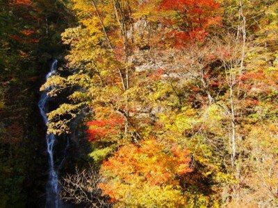 東京都檜原都民の森