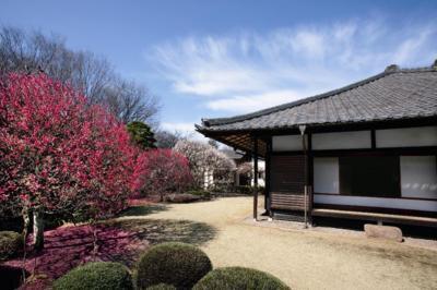 小平市平櫛田中彫刻美術館