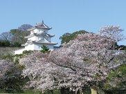 兵庫県立 明石公園