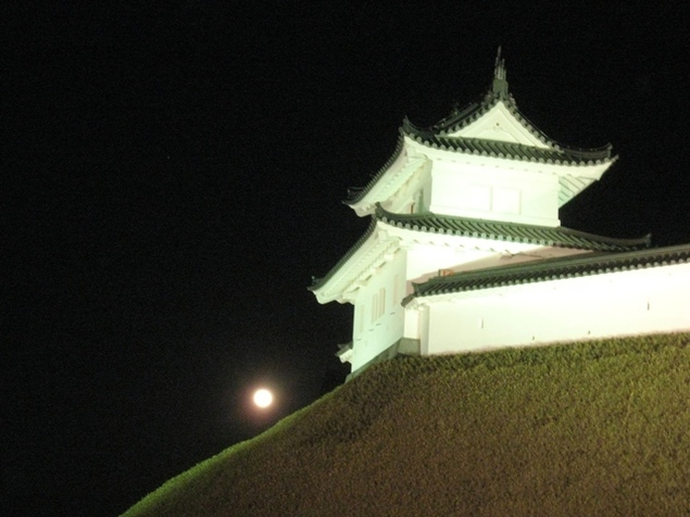 宇都宮城址公園の夜景