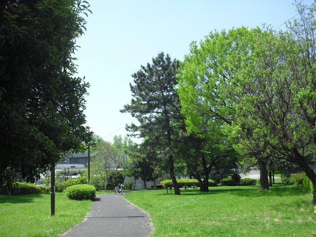 都立青山公園