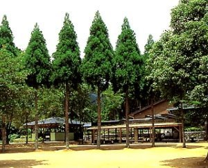 船津キャンプ場