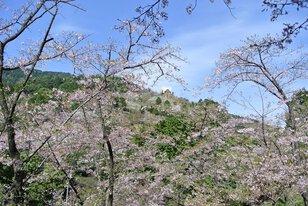 福岡市油山市民の森