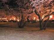 すすきヶ原入野公園