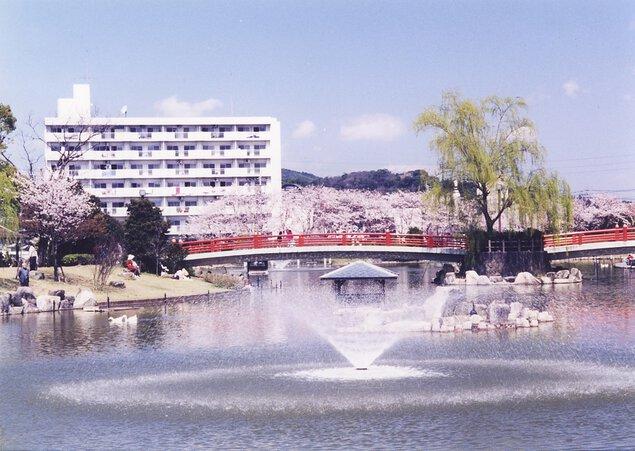 勝盛公園の桜