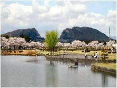 柏原池公園