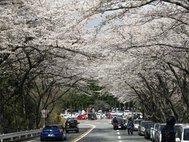 アネスト岩田 ターンパイク箱根 御所の入駐車場付近