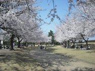 富山県常願寺川公園