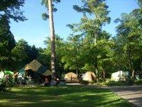 森の国キャンプ場