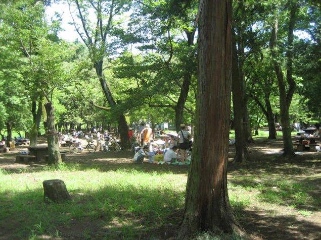 武蔵野公園 バーベキュー広場