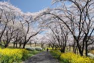 国営武蔵丘陵森林公園