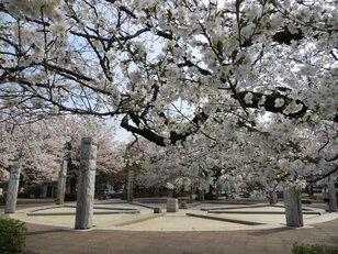 武蔵野公園