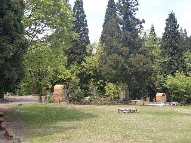 川口運動公園オートキャンプ場