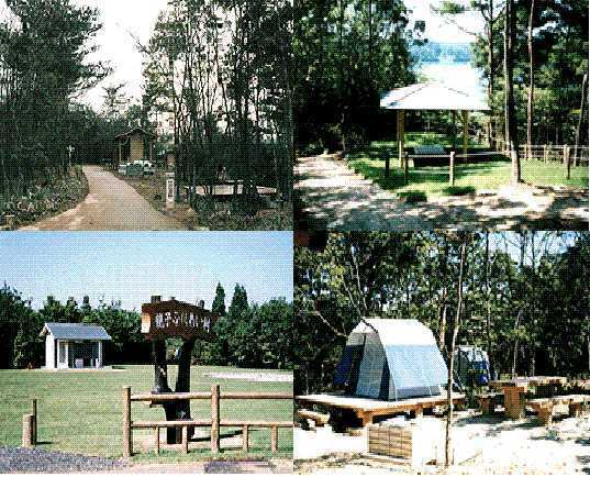 親子ふれあい村「キャンプの森」