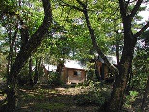 越前市八ッ杉森林学習センターキャンプ場