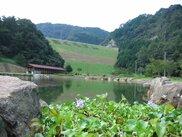 朝倉ダム湖畔緑水公園