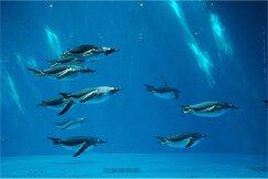 長崎ペンギン水族館