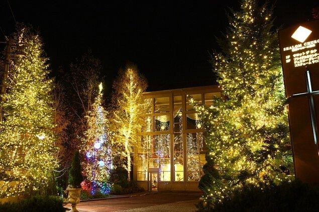 藻岩シャローム教会 イルミネーション&クリスマスツリー