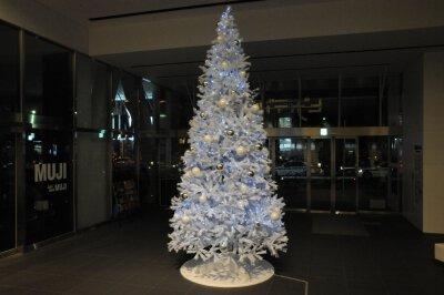 『アリー スター誕生』✕新ピカクリスマスツリー