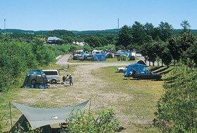 鶴居村キャンプ場