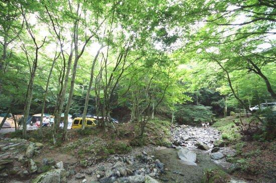 道 志村 オート キャンプ 場