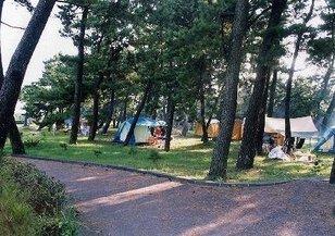 高鍋海水浴場キャンプ村