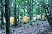 花房峡憩いの森キャンプ場