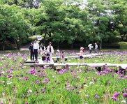 阿波岐原森林公園市民の森