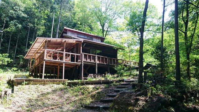 水と木の家