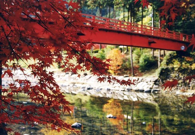 宇甘渓の紅葉