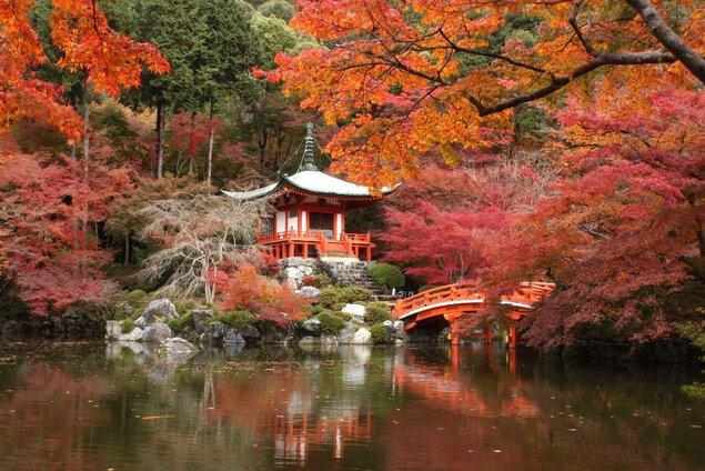洛南(醍醐寺)の紅葉